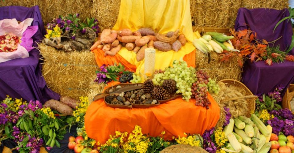 Harvest-Festival-960x500_c